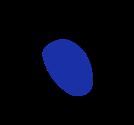 limerick_mouse